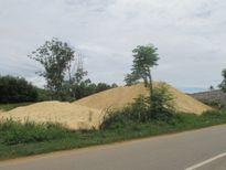 Bình Định: Phản đối khai thác cát, dân xô xát với nhân viên doanh nghiệp
