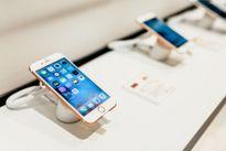 Samsung, Apple, Oppo và sự nhàm chán của thị trường di động Việt