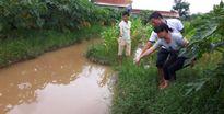 Hà Nội: Bé trai 10 tuổi tử vong với nhiều vết tím bầm trên người
