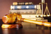 Bảo đảm thực hiện nghĩa vụ trong tranh chấp hợp đồng tín dụng