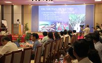 Hiệp hội Du lịch Đà Nẵng gửi kiến nghị mới nhất về bán đảo Sơn Trà lên Trung ương