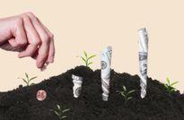 Dòng tiền tài trợ cho các start-up đang có xu hướng 'mất nhiệt'
