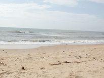 Xử lý vi phạm trong dự án nhận chìm 1 triệu m3 bùn xuống biển