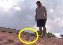 Sửng sốt phát hiện nhiều gói xúc xích đông lạnh rơi trên mái nhà