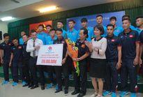 U15 Việt Nam được thưởng lớn sau chức vô địch giải U15 ĐNÁ 2017