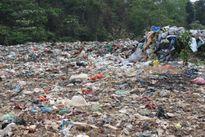 Đô thị Việt Nam 'gặp họa' vì ô nhiễm môi trường đất