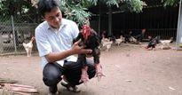 NDXS 2017: 'Vua gà' Đông Tảo hé lộ bí quyết hốt gọn 3,5 tỷ đồng/năm