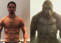 Ibra tự so sánh với 'Vua linh trưởng' King Kong