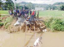 Hậu Lộc (Thanh Hóa): Dân 'bò' qua kênh bằng thang sắt