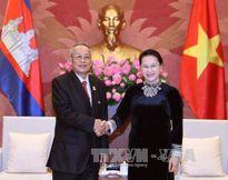 Chủ tịch Quốc hội tiếp Phó Chủ tịch thứ nhất Thượng viện Vương quốc Campuchia
