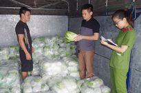 Hà Nam: Tóm gọn xe ô tô chở gần 2 tấn rau Trung Quốc