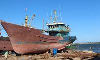 Thủ tục quá rườm rà, ngư dân Quảng Trị ngóng mãi tiền bảo dưỡng tàu 67