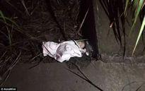 'Mẹ nhí' 12 tuổi tự sinh con, vứt vào bụi rậm