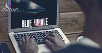 'Thử thách cá voi xanh' - trò chơi nguy hiểm khiến 130 người trẻ tự sát