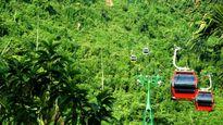 Xây cáp treo tại vườn quốc gia Bạch Mã: ĐBQH tâm tư