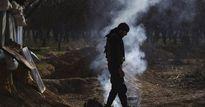 Bị đánh tơi bời ở Qalamoun, chỉ huy IS 'giương cờ trắng' trước quân đội Syria