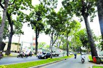 Nỗ lực giải quyết kẹt xe khu vực sân bay Tân Sơn Nhất