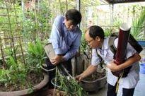 Vẫn phát hiện nhiều ổ lăng quăng ở nhà người dân tại Hà Nội