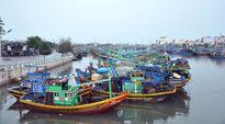 Bình Thuận: Hỗ trợ gần 16 tỉ đồng cho tàu đánh bắt xa bờ