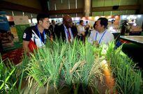 Đầu tư y tế là chìa khóa phát triển bền vững