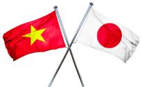 63% DN Nhật Bản báo lãi khi kinh doanh tại Việt Nam năm 2016