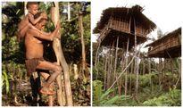 Những bí ẩn về bộ tộc sống trên cây còn lại duy nhất trên thế giới