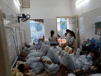 Hà Nội đứng đầu cả nước về số ca sốt xuất huyết