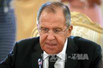 Ai Cập và Nga đạt 'tiến bộ' trong nối lại hoạt động hàng không