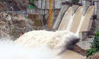 Trung Nam Group đầu tư Thủy điện Bác Ái?