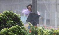 Hong Kong, Ma Cao tê liệt vì bão Hato, ít nhất 3 người chết