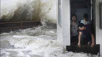 Trước khi vào Việt Nam, bão Hato khiến Hong Kong 'điêu đứng' như thế nào?
