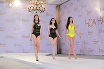 Hàng loạt người quen 'đốt nóng' vòng sơ khảo HH Hoàn vũ Việt Nam 2017 với màn trình diễn bikini