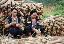 Làng nghề đan rọ tôm ven hồ Thác Bà, thu trên 5 tỷ đồng/năm