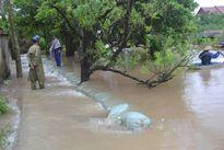 Mưa lớn tràn đê bao, ngập lụt tại nhiều xã ở huyện Kiến Xương, Thái Bình