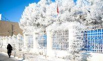 Thử thách những trái tim dũng cảm tại điểm lạnh giá nhất thế giới
