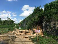 Tường thành của di sản văn hóa thế giới Thành Nhà Hồ bị sạt lở