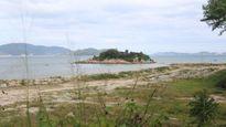 Xem xét thu hồi dự án lấn biển Nha Trang Sao