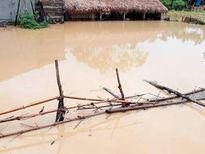 Mưa lớn trên địa bàn Con Cuông khiến nhiều vùng ngập lụt