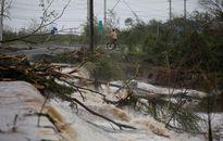 Siêu bão Maria đánh sập mạng lưới điện vùng lãnh thổ Puerto Rico của Mỹ
