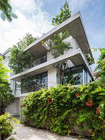Khám phá căn nhà 'cây mọc xuyên tường' ở Sài Gòn của KTS Võ Trọng Nghĩa