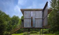 Ngôi nhà 32m2 giữa rừng xanh khiến ai cũng muốn đến ở một lần