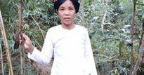 Làm giàu ở nông thôn: Một nghề thì sống, đống nghề có trăm triệu
