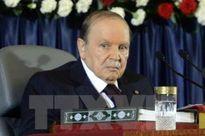 Algeria đối mặt khủng hoảng ngân sách nghiêm trọng