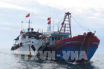 Bình Thuận xử lý tàu giã cào bay hoạt động trái phép