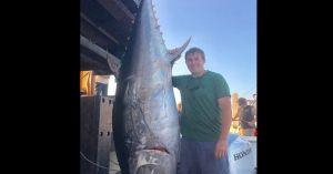 Mỹ: Câu được cá ngừ 'khủng' 3 tạ khi đang đọc sách