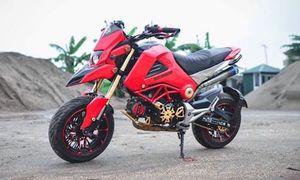 Dân Việt độ 'xe ruồi' Honda MSX125 thành Ducati khủng