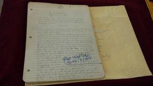 Những điều chưa biết về cuốn Nhật ký Đặng Thùy Trâm