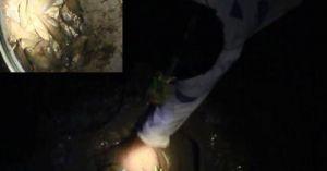 Đào hố bắt cả chục kg cá rô đồng một đêm ở Hà Nội