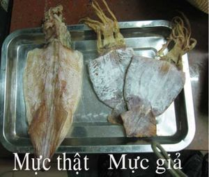 Kinh hãi: Mực khô làm từ nilon có xuất xứ từ Trung Quốc tràn lan, phân biệt thế nào?