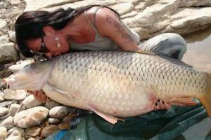 Clip: Người đẹp câu được cá chép khổng lồ trên hồ tự nhiên